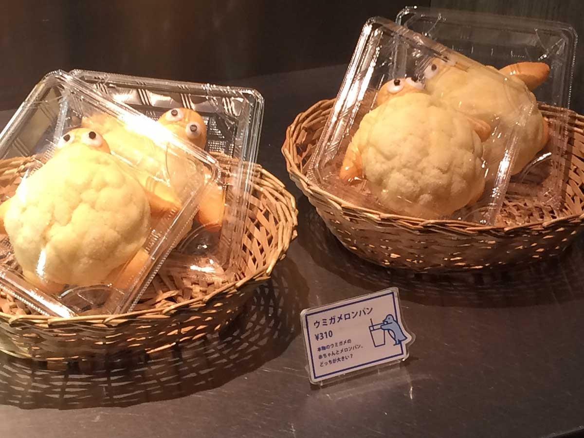 ウミガメロンパン