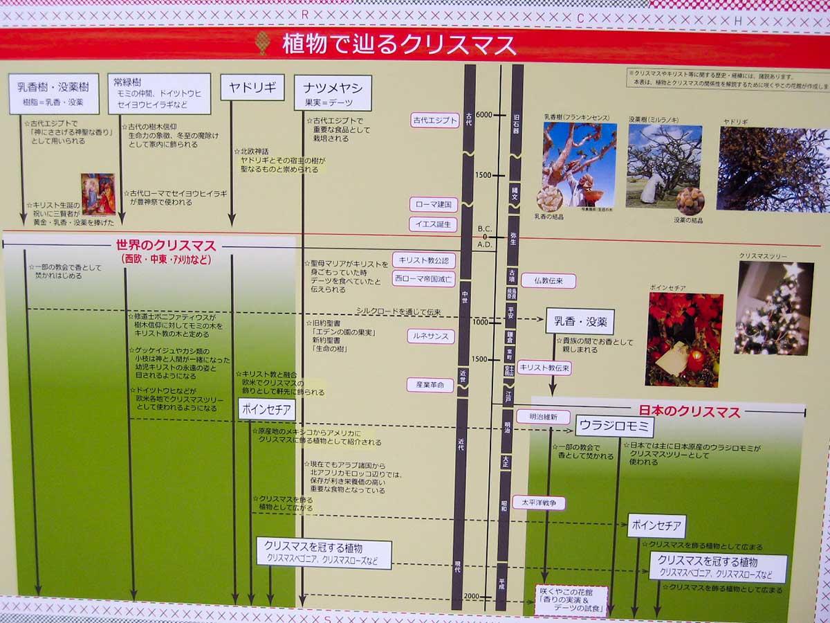 そんなこんなで「咲くやこの花館」 大阪発~下道で行く!車中泊旅行編26~