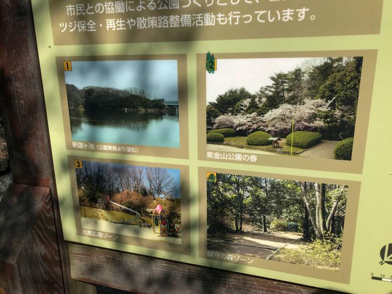 紫金山公園案内板2
